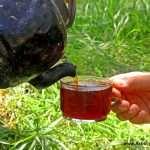 تهیه چای زغالی از طریق هیزم های خشک