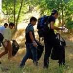 پاکسازی پسماندهای مضر در محوطه ی جنگلی دریاچه زریبار