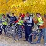 همرکابان سبز در زیر درخت زرد رنگ پاییزی
