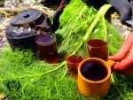 چای آلبالویی عصاره ای از طبیعت